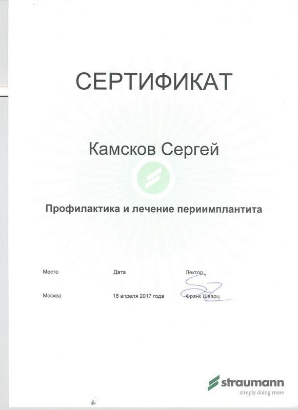 Камсков Сергей Викторович - Камсков Сергей Викторович сертификат