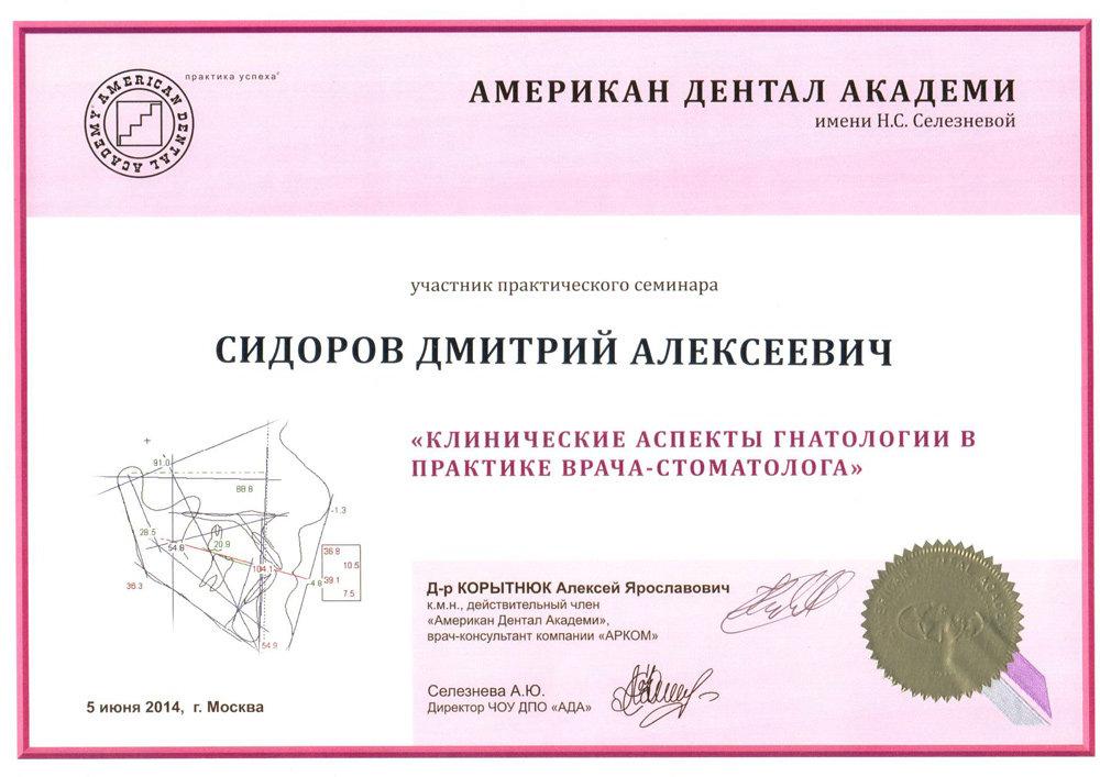 Сидоров Дмитрий Алексеевич - Сертификат Сидорова Дмитрия Алексеевича