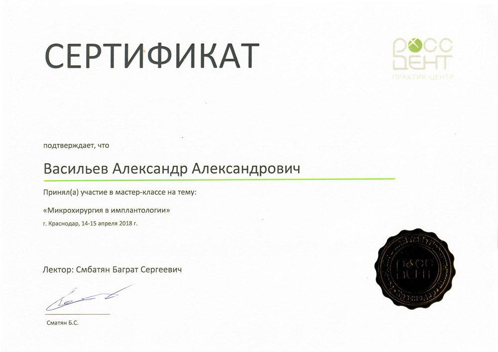 Васильев Александр Александрович - Сертификат Васильева Александра Александровича