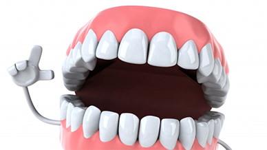 Жизненный цикл зубов